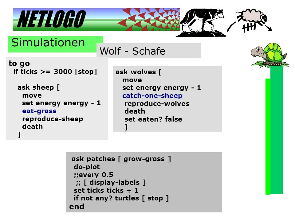 Simulationen Wolf - Schafe to go ask patches [ grow-grass ] end